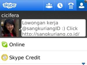 my profile skype