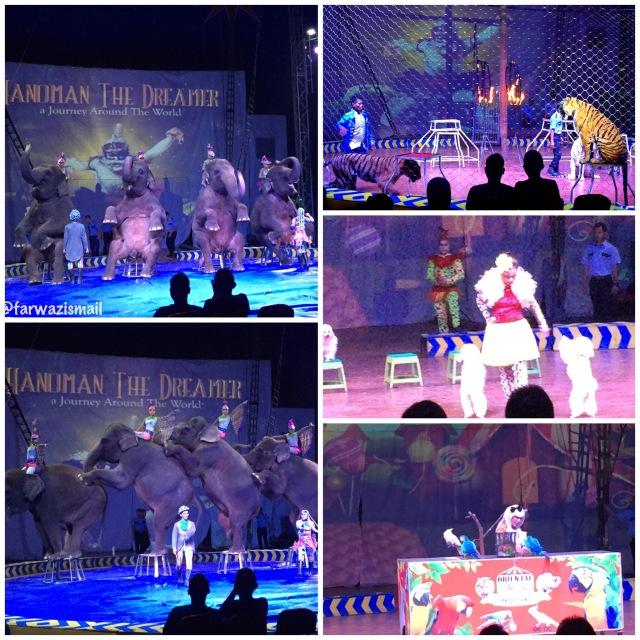 atraksi hewan di oriental circus indonesia